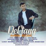 دانلود آهنگ احمد رضایی بنام دلتنگ