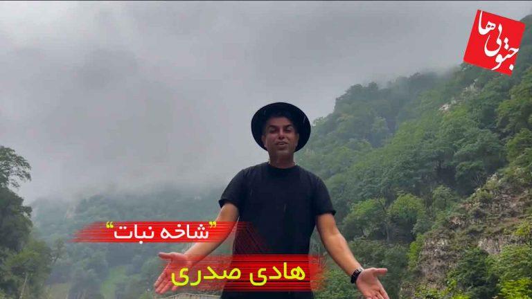 موزیک ویدیو جدید هادی صدری شاخه نبات